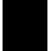 АМФР, женщины мини-футбол, Россия, женский футзал, спорт, Высшая Лига 13/14, АВРОРА