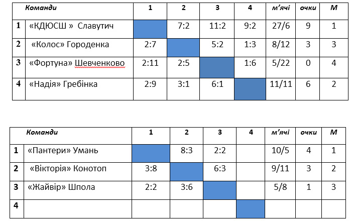 Україна, змагання, минифутбол, АМФУ, жіночий футзал, ДЮСШ, дівочий футзал, женский футзал, чу, 2002-2003, Гребінка